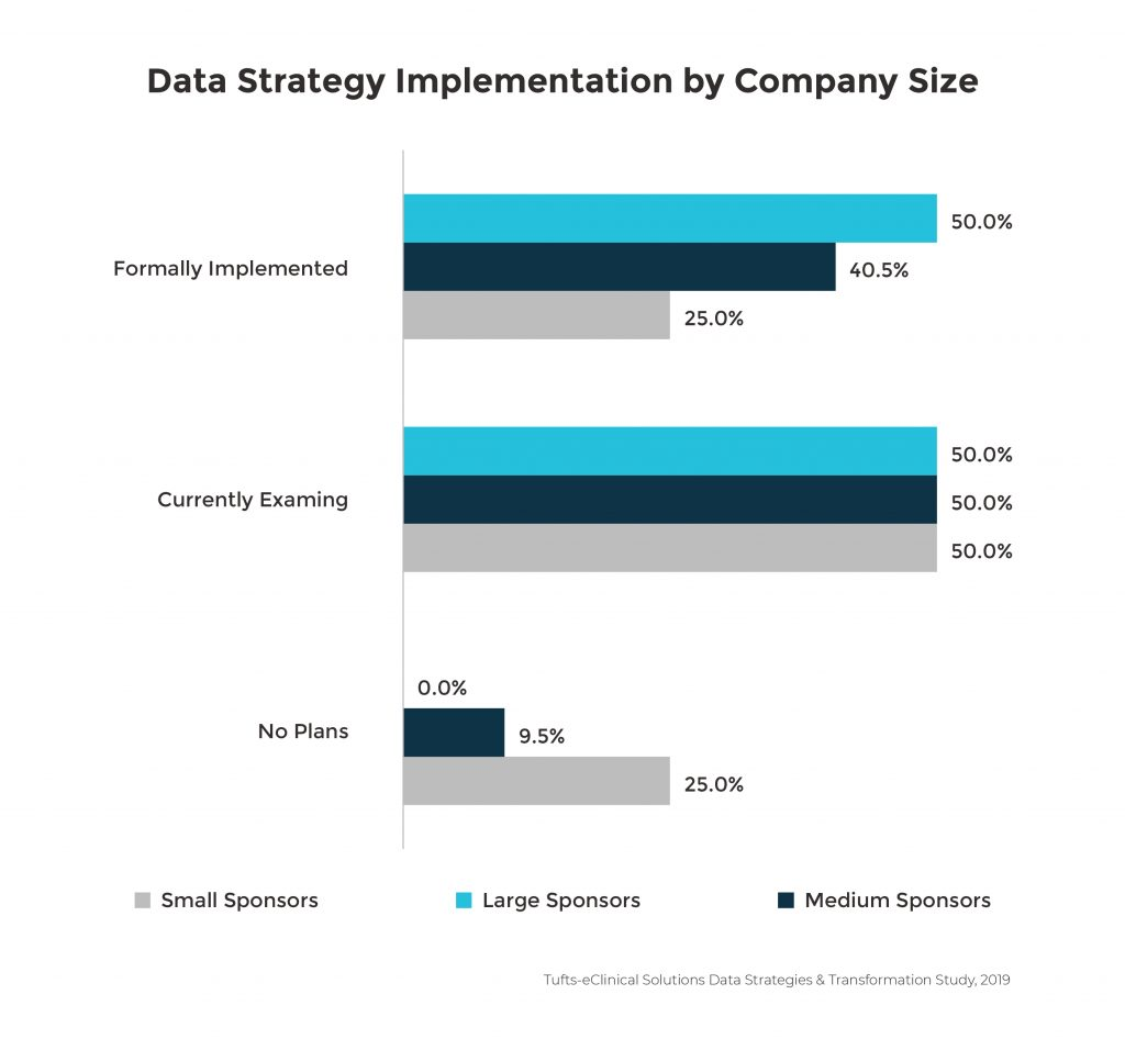 Data Strategy Implementation by Company Size